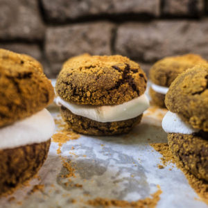 Chocolate Crinkle S'mores